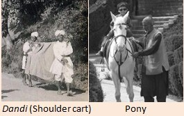 Shoulder and pony carts